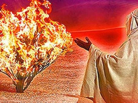 Fire & Idols (3rd Lent C)