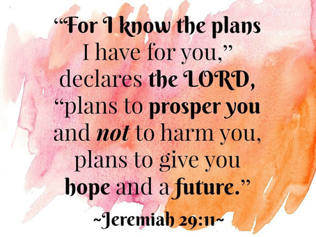 The Plans I Have For You (18th Pentecost, Proper 23C)