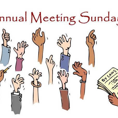 Annual Meeting on January 31, 2021