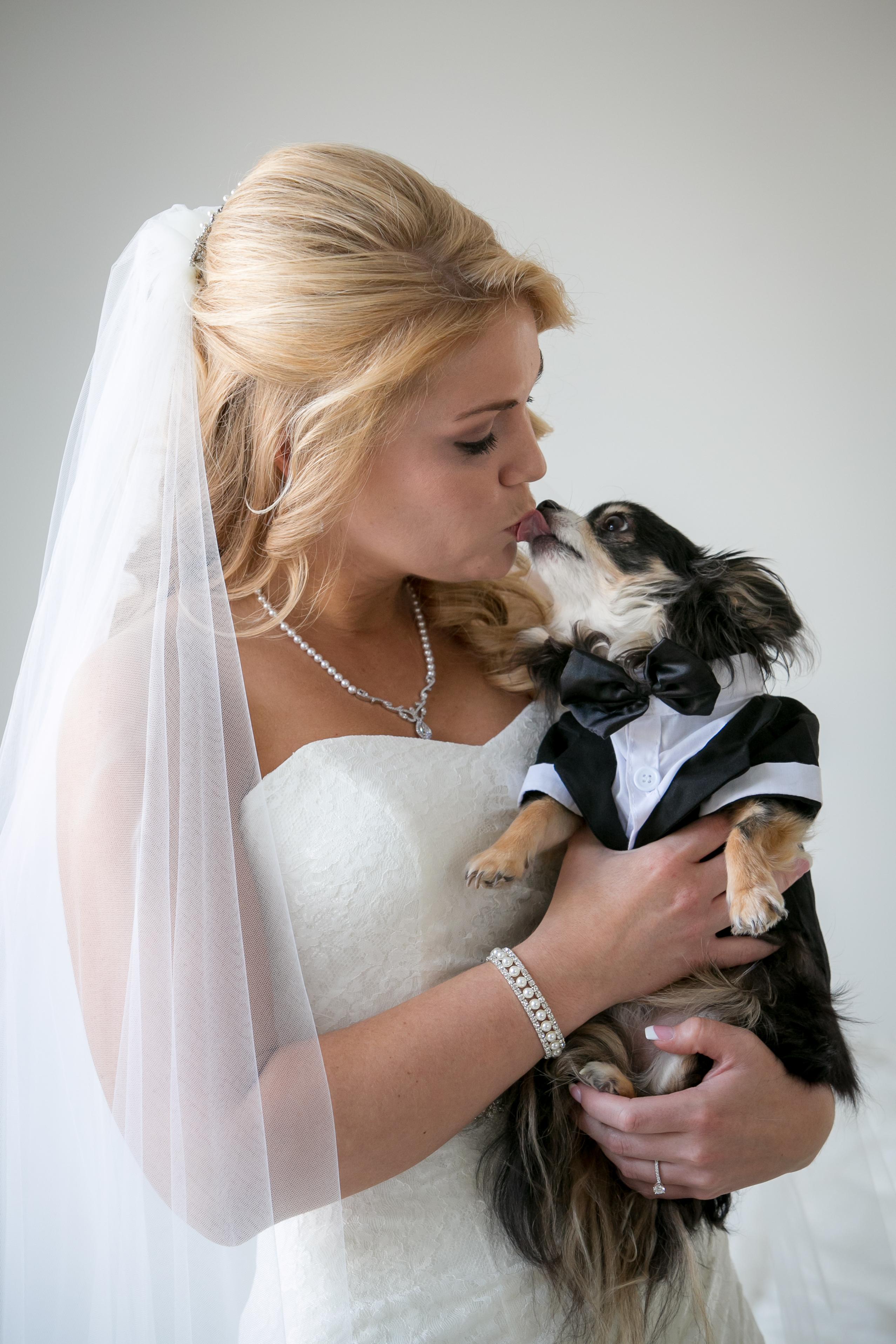 Dog Kissing Bride