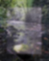 Cattaloochie Stream.jpg