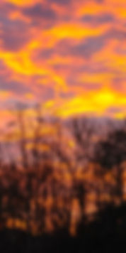 Fiery Sunset Triptych 3 10X20.jpg