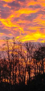 Fiery Sunset Triptych 3 10X20.jpg