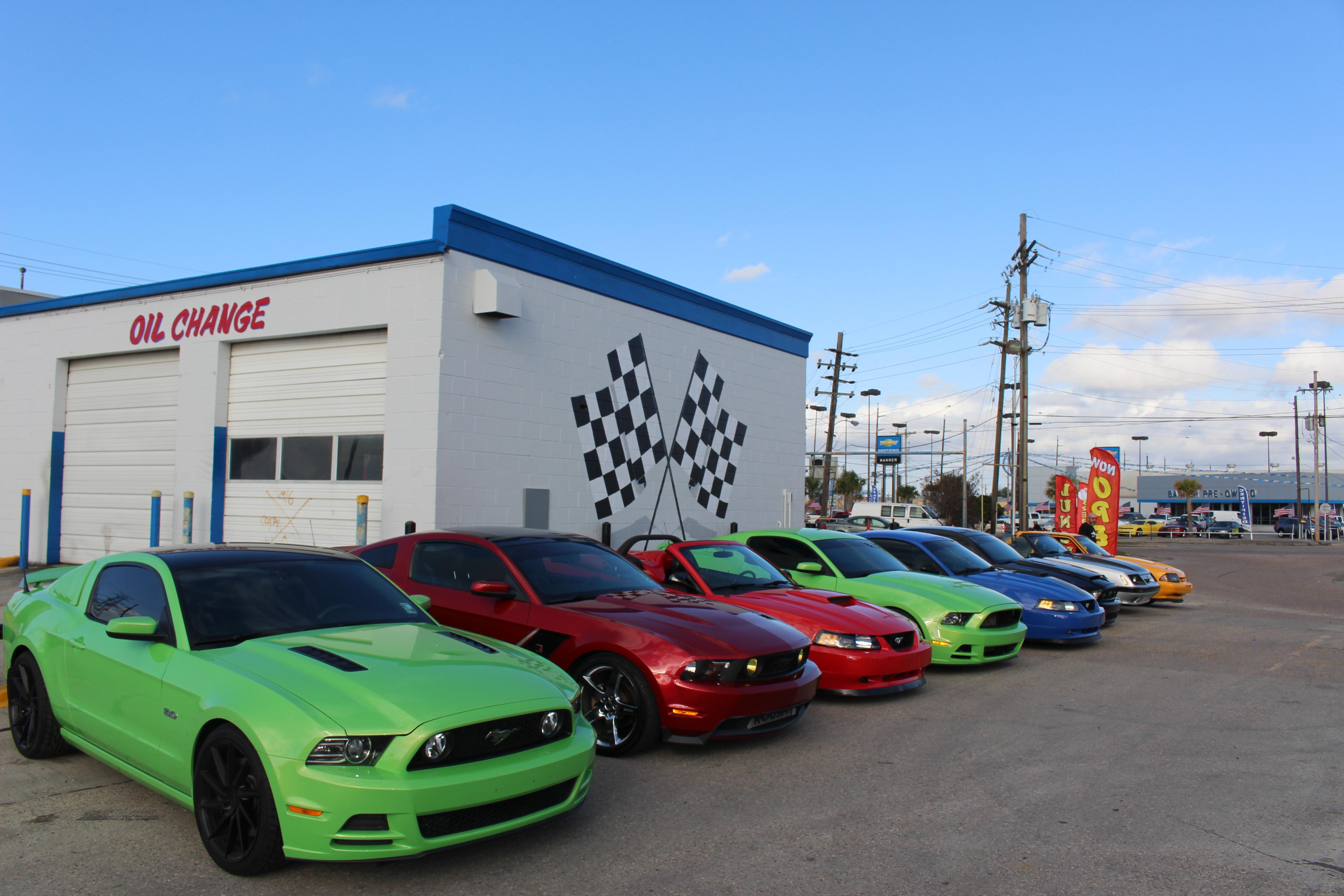 Voodoo Mustangs