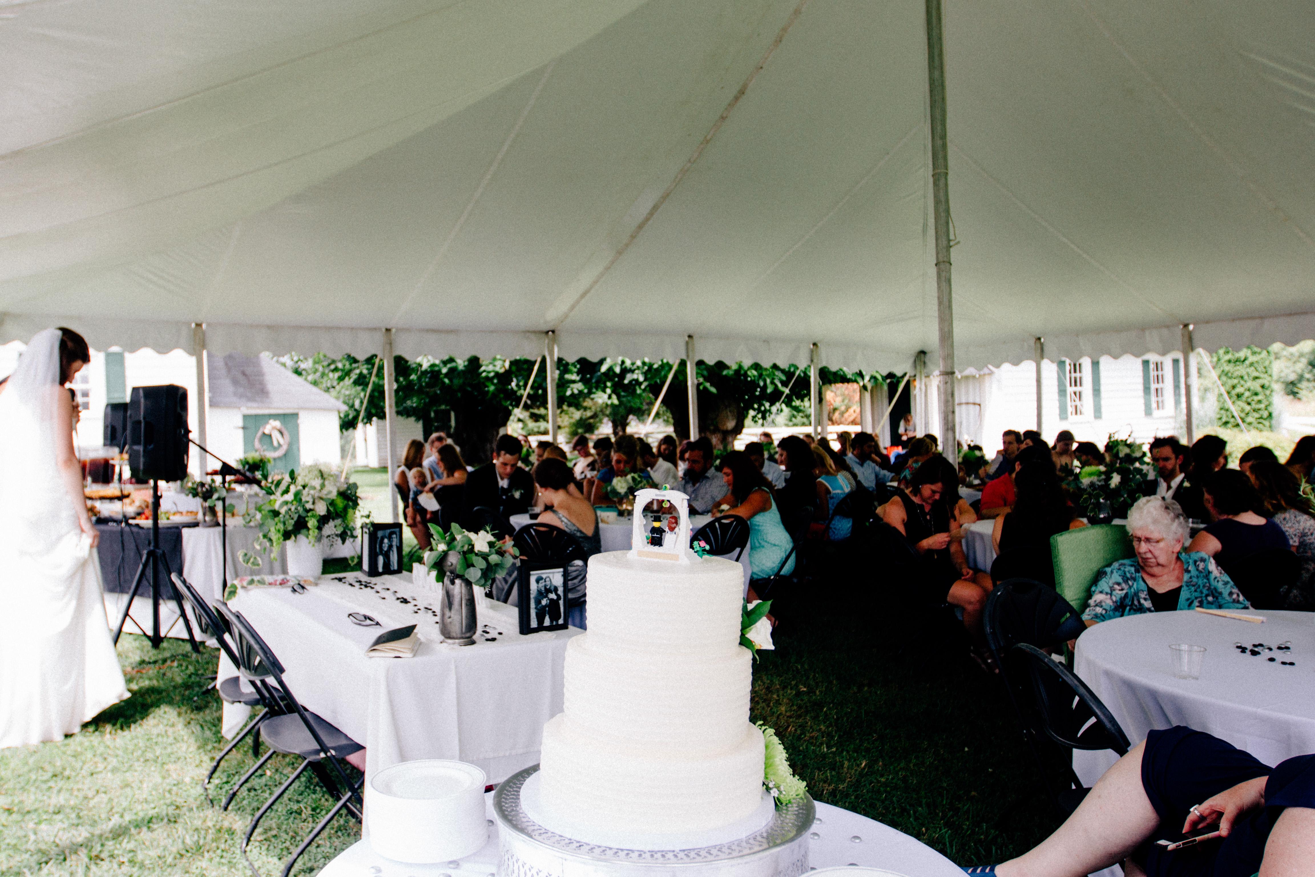 Nathan _ Grace Wedding - 7 - Reception-744