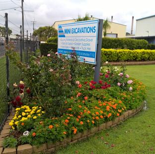 mx yard in bloom.jpg