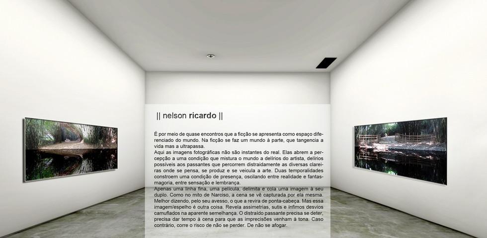 #vista 5 Nelson Ricardo texto.jpg
