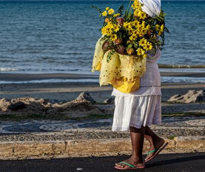 Devoção em flores