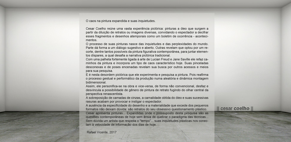 #vista 11 Cesar Coelho Gomes texto.jpg