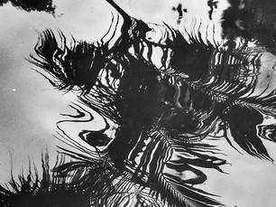 Water Grafite . Díptico