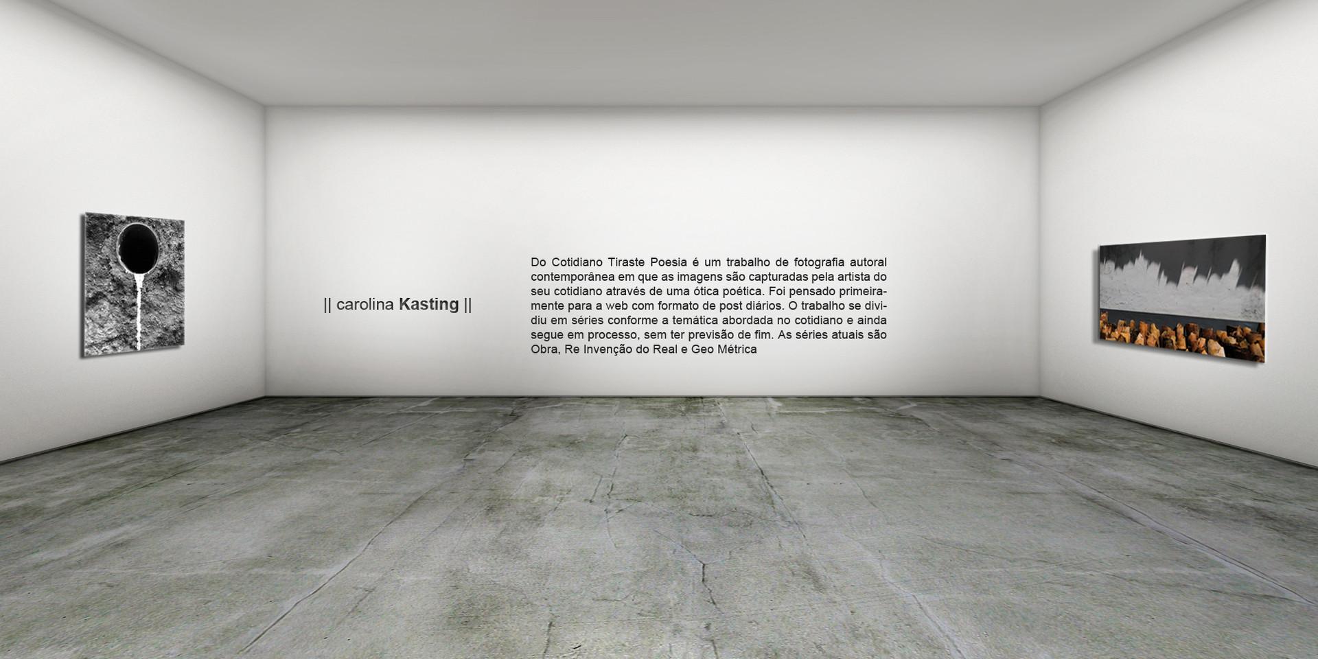 #vista 4 Carolina Kasting texto.jpg