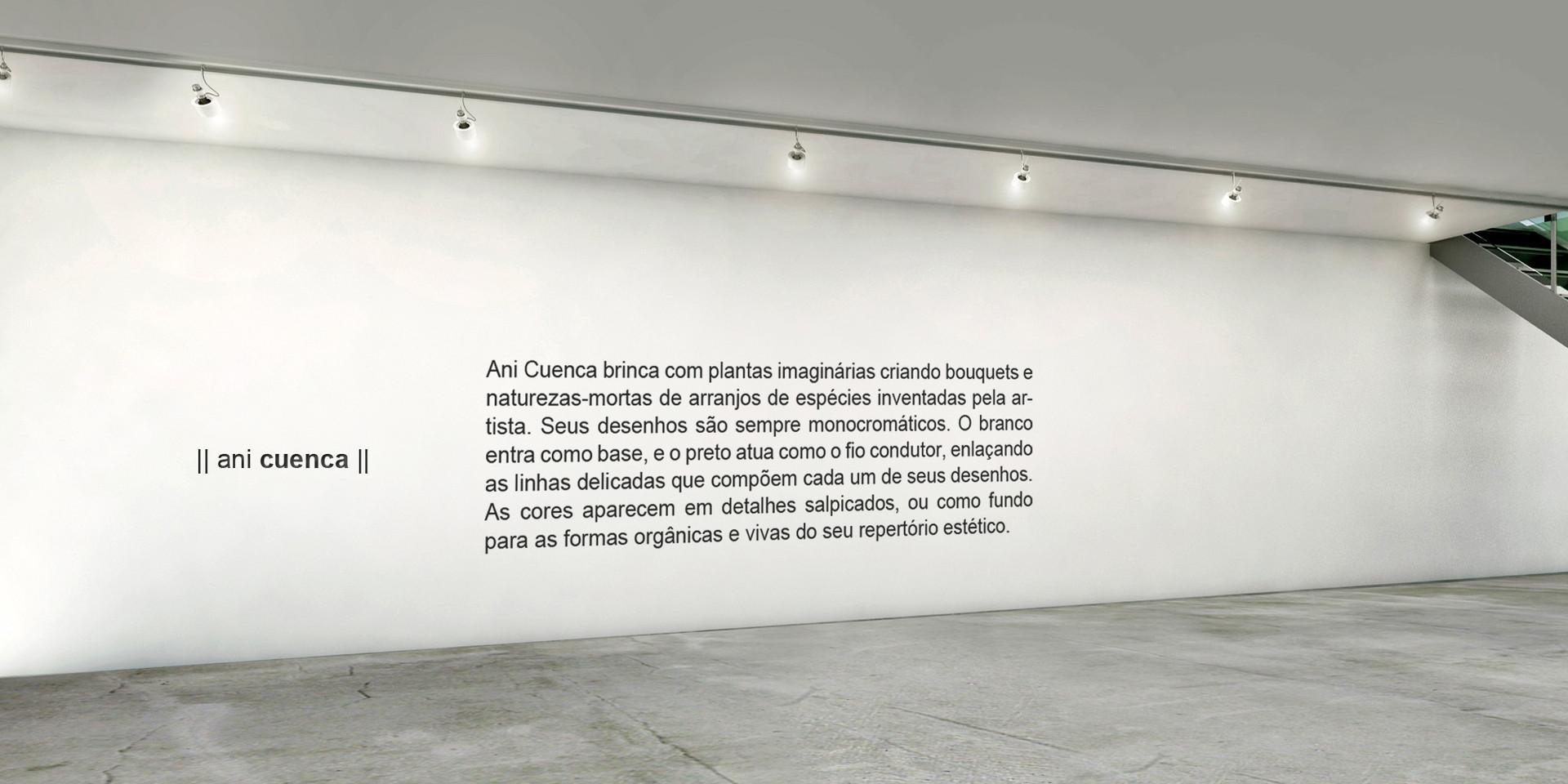 #vista 13 Ani Cuenca texto.jpg