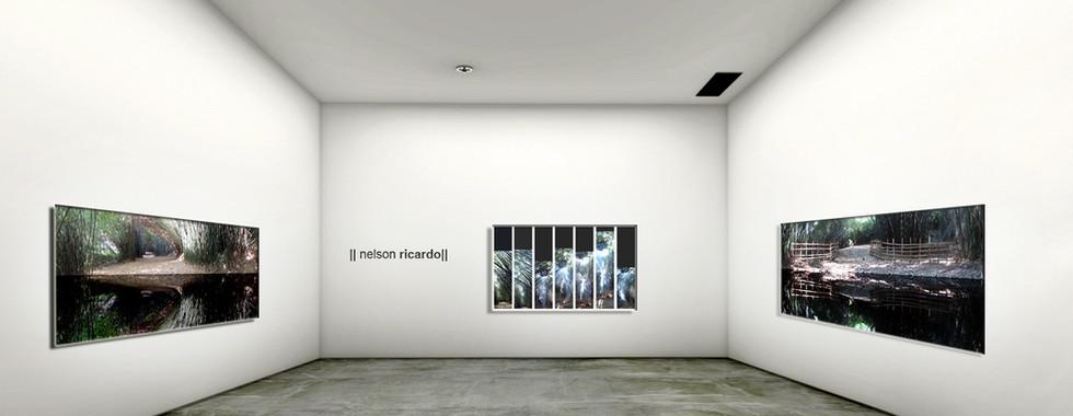 #vista 5 Nelson Ricardo.jpg