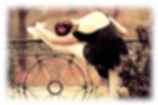 大人バレエ,習い事,ダイエット,アンチエイジング,美容,痩せ体質,40代,ストレッチ,新座市,志木市