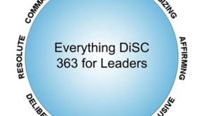 Building business success with Everything DiSC