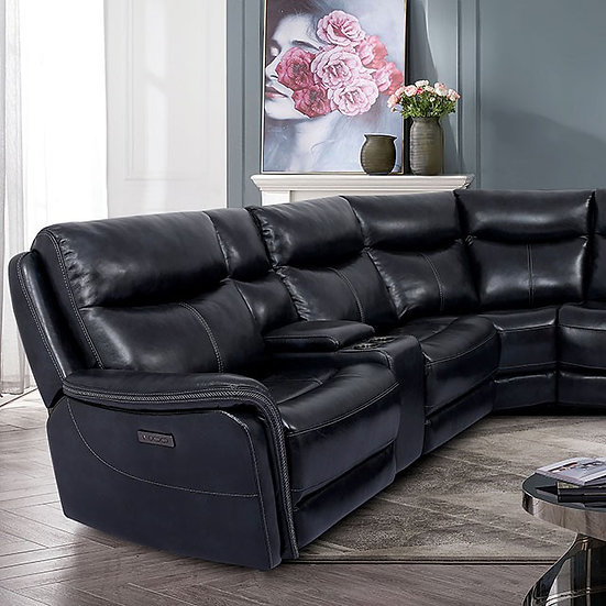 BRAYLEE POWER SECTIONAL
