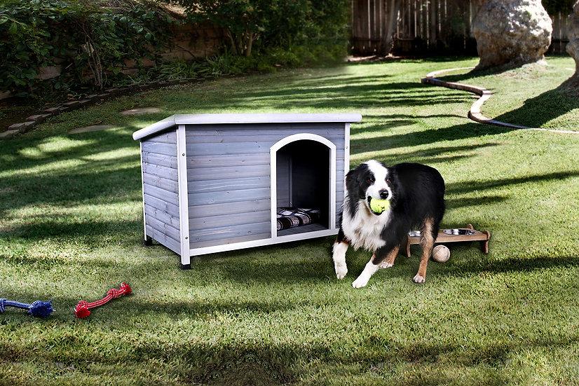Condo Dog house