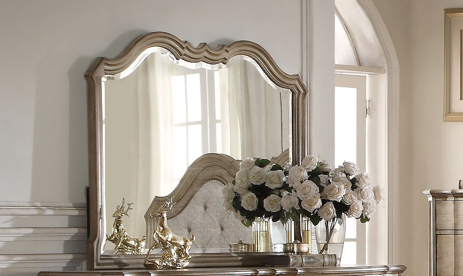 Chelmsford Landscape Mirror in Antique Taupe