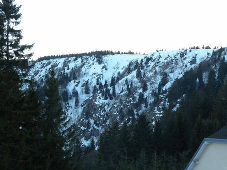 Mid-week Rando raquette au Gazon du Faing et ski à la Mauselaine