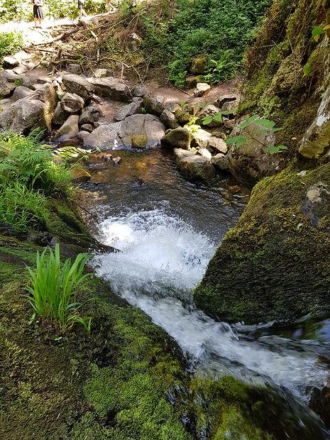 Vue du Bassin inférieur de la petite cascade du Tendon