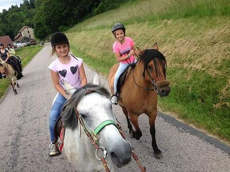 Randonnée au Col du Brabant avec Crins des Vosges