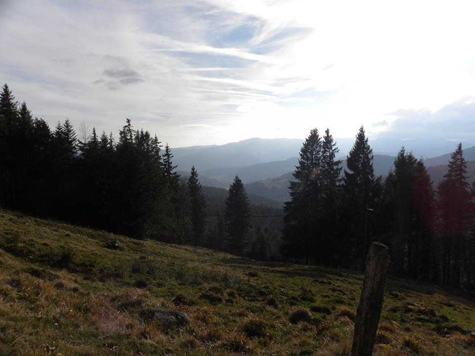 Vue sur la vallée Alsacienne