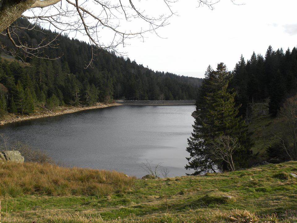 Lac des Truites ou de Forlet
