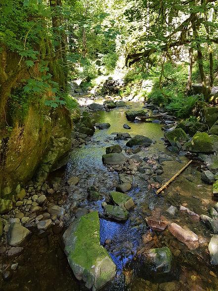 Ruisseau partant du Saut du Bouchot