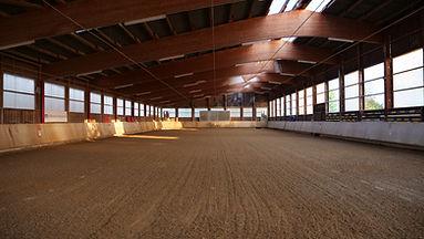 Große Halle (4).JPG