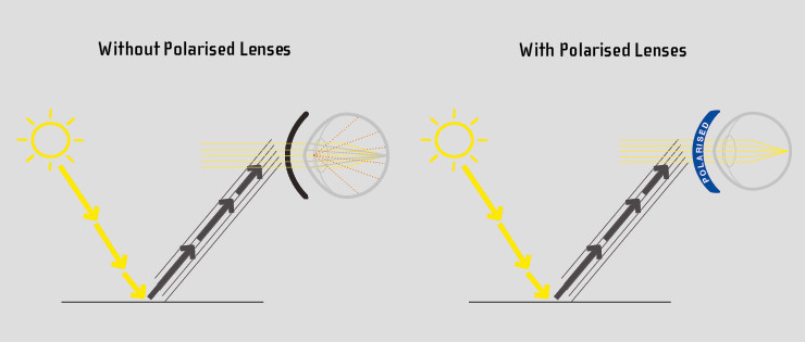 Polarised lenses vs non polarised lenses