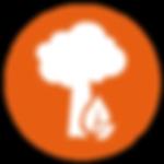 ATOM Environmental Icon.png
