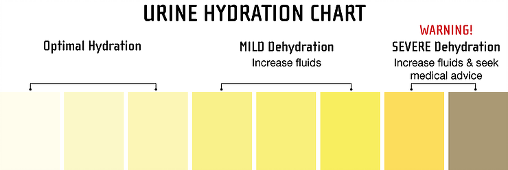 Urine Hydration Chart