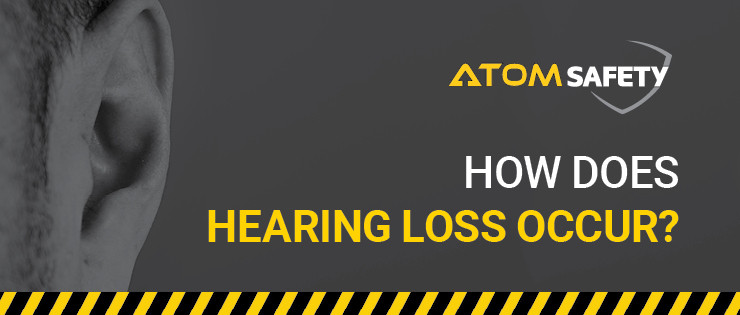 How Does Hearing Loss Occur?