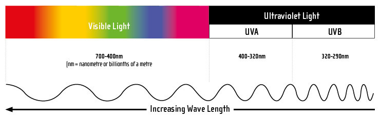 Wave length of visible and ultraviolet light