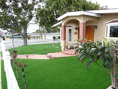 landscaping turf