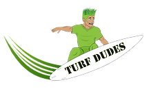 what is turf grass