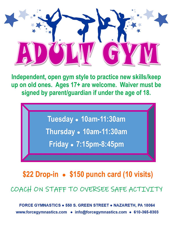 Adult Gym Flyer.jpg