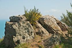 rocher du coucou