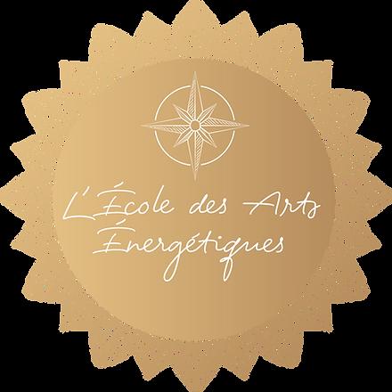 macaron ecole des arts energetique sans formation_1.png
