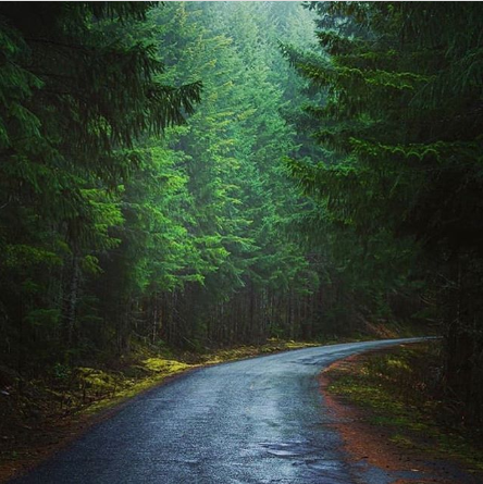 Go for a drive on the many beautiful backroads. See more in our guidebook!