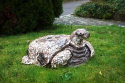 Antik Schildkröte