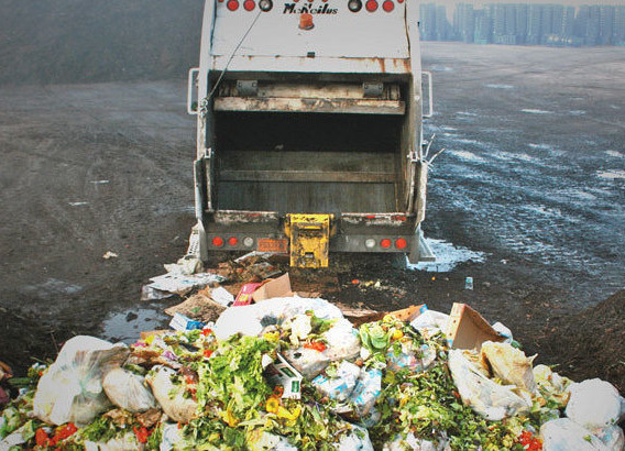 Food Waste: The Big Picture