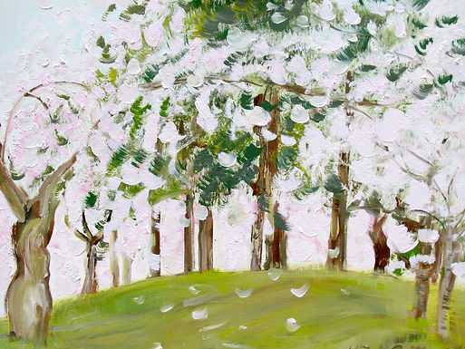 2617,Cherry Blossoms and Pine Trees, 201