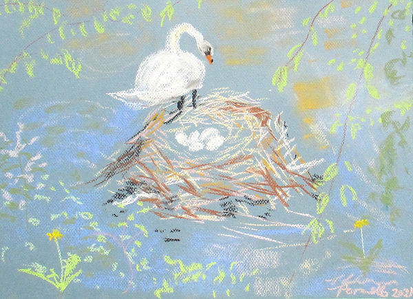 #4121 New Swan with Five Eggs, pastel on