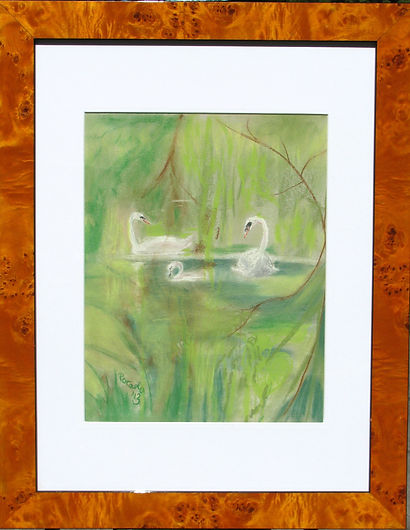 The Cygnet, framed.jpg