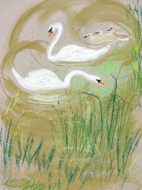 In the Duckweed