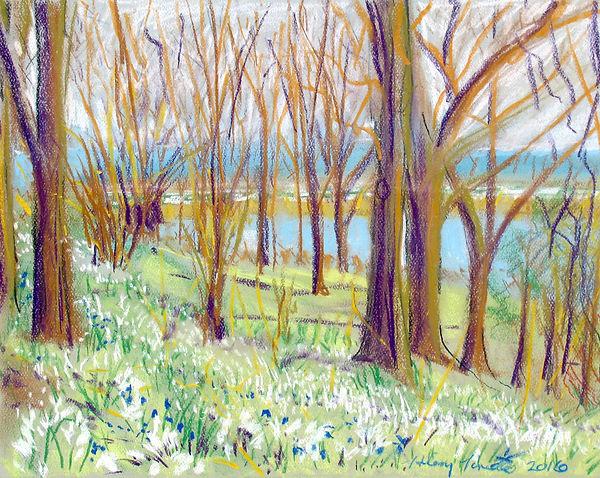Porado 2016 Lake and Pond through Trees,