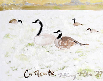 #0720 En Route, (Canada goose family of