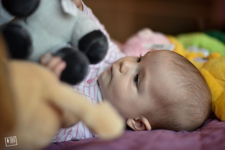 newborn gravidanza famiglia
