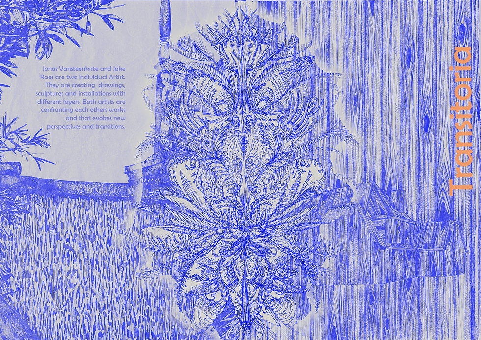 ok_coverstesttestoranjeblauw_transitoria.png